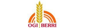 Ogi Berri: cliente de Puertas Merino